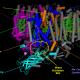 Figure 4. Cyanobacterial photosystem II, Monomer, PDB 2AXT
