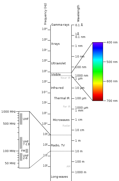Visible Light and Photosynthetic Pigments